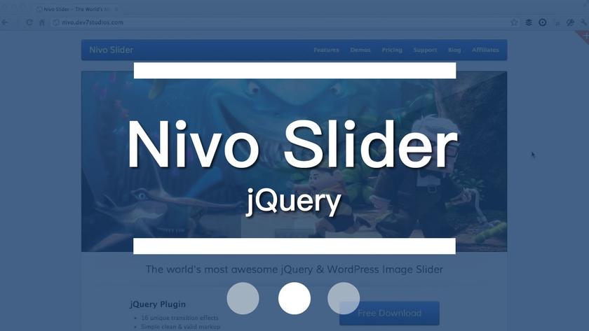 Nivo Slider jQuery 插件教程教学